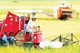 Các giải pháp thực hiện Chương trình mục tiêu quốc gia về nông thôn mới - ảnh 1