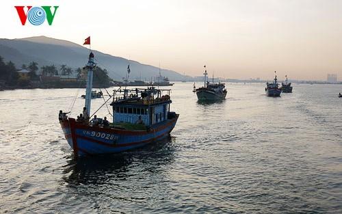 Ngư dân Việt Nam phản đối lệnh cấm biển phi lý của Trung Quốc - ảnh 1