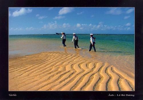 Preisverleihung für den Literaturwettbewerb über das vietnamesische Meer - ảnh 1