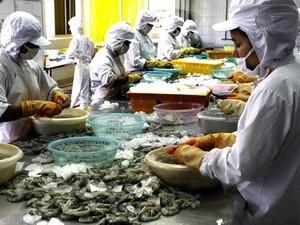 Beratung über US-Strafzölle für vietnamesische Tiefkühlgarnelen  - ảnh 1