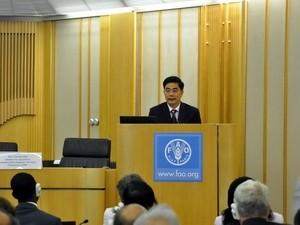 Vietnamesische Landwirtschaftsminister tagt mit FAO-Vertretern - ảnh 1