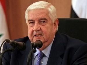 Die syrische Regierung will an Friedenskonferenz in Genf teilnehmen - ảnh 1
