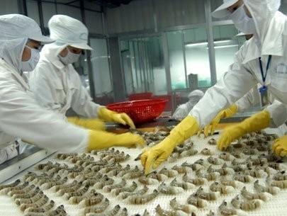 USA verhängen Strafzölle gegen vietnamesische Tiefkühlgarnelen - ảnh 1