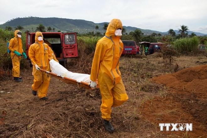 UN-Generalsekretär fordert 20 Mal mehr Ebola-Hilfe als bislang zugesagt - ảnh 1