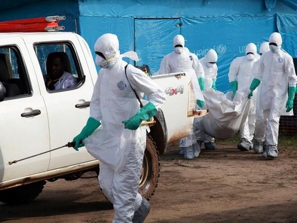 Ebola-Epidemie verhindern: schwierige Aufgabe - ảnh 1