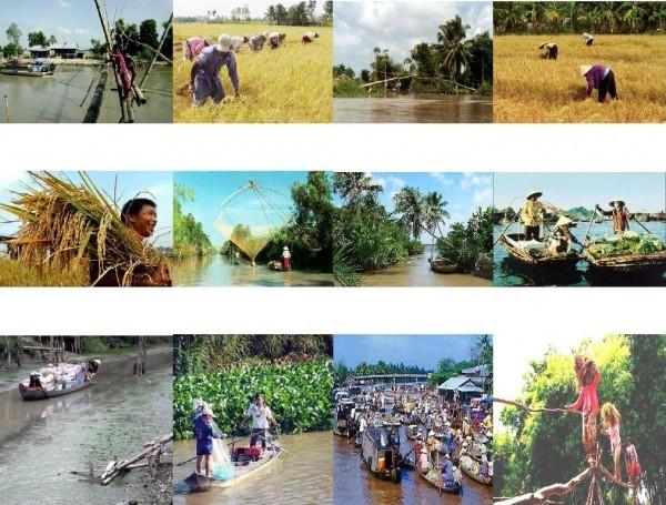 Zusammenarbeit der Provinzen durch Wirtschaftsforum für Mekong-Delta - ảnh 1