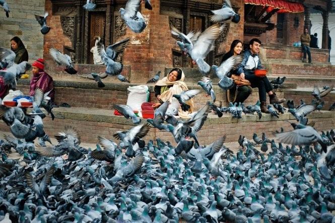 """Ho Chi Minh Stadt: Ausstellung """"Nach Nepal richten"""" - ảnh 1"""