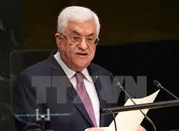 Der palästinensische Präsident rief die UNO zum Schutz seiner Bürger auf - ảnh 1
