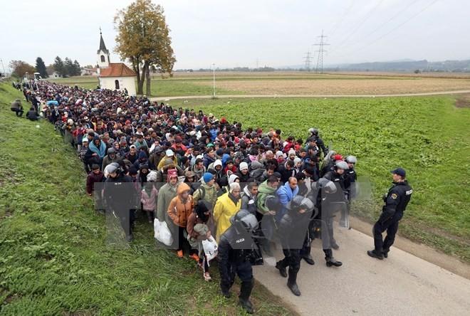 Europa strengt sich bei der Lösung der Flüchtlingskrise an - ảnh 1