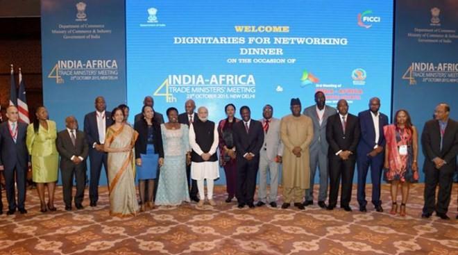 Indien und afrikanische Länder vereinbaren die Verstärkung der Zusammenarbeit - ảnh 1