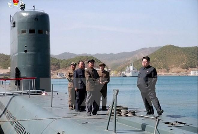 EU verschärft Sanktionen gegen Nordkorea - ảnh 1