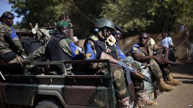 Fünf UN-Soldaten sind in Mali gestorben - ảnh 1