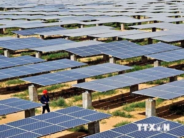 Bau des Solarwärmekraftwerks in der Provinz Ninh Thuan - ảnh 1