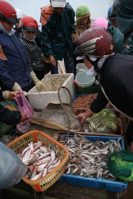 Morgens auf dem Fischmarkt in der Gemeinde Giao Hai in Nam Dinh - ảnh 2