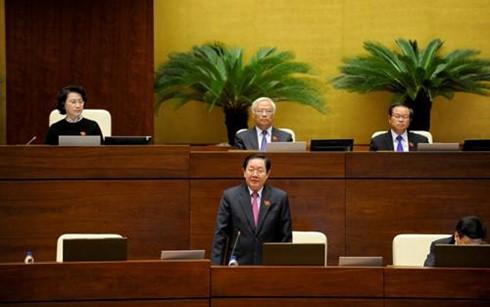 Der Innenminister stellt sich den Fragen vor dem Parlament  - ảnh 1