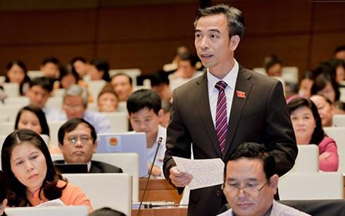 Das Parlament verabschiedet das Gesetz zur Versteigerung des Besitzes - ảnh 1