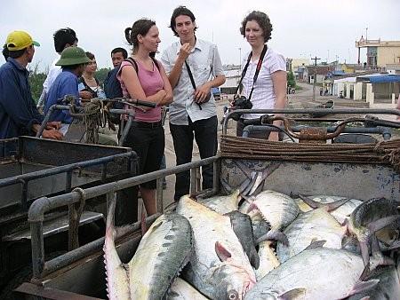 Homestay in nordvietnamesischen Provinzen erleben - ảnh 2