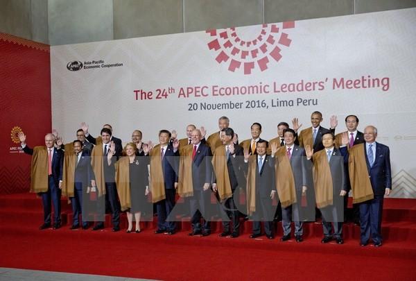Die asiatisch-pazifischen Länder vereinbaren Kampf gegen Protektionismus - ảnh 1