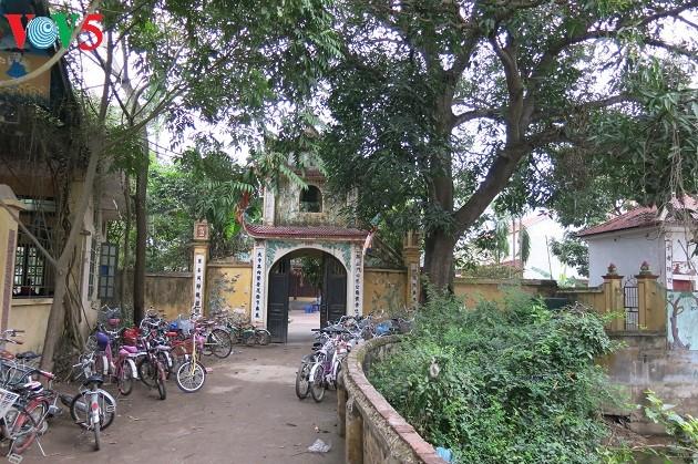 Das Dorf Binh Da, ein Ort der Kulturschätze - ảnh 2