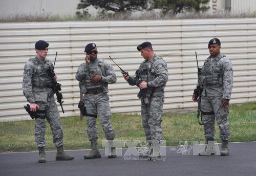 Das NATO-Manöver in Osteuropa hat begonnen - ảnh 1