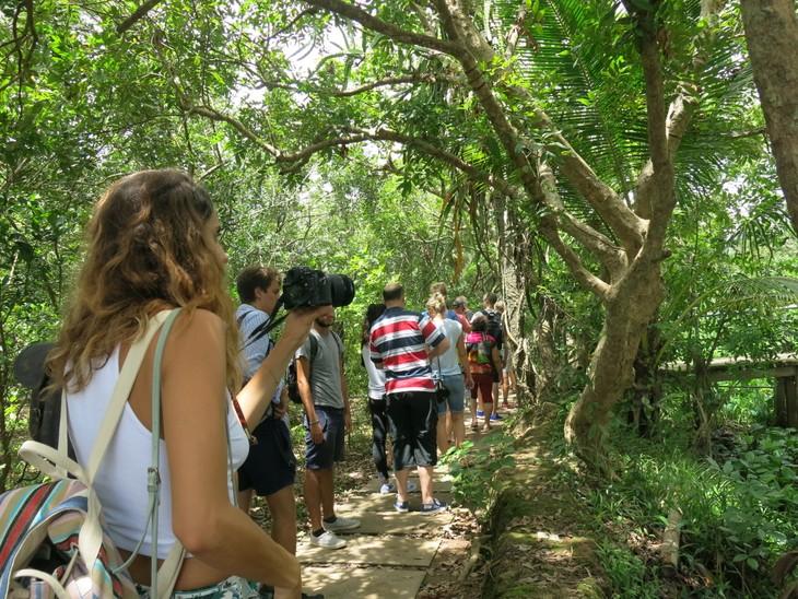Bewohner der Insel Thoi Son entwickeln Ökotourismus - ảnh 1