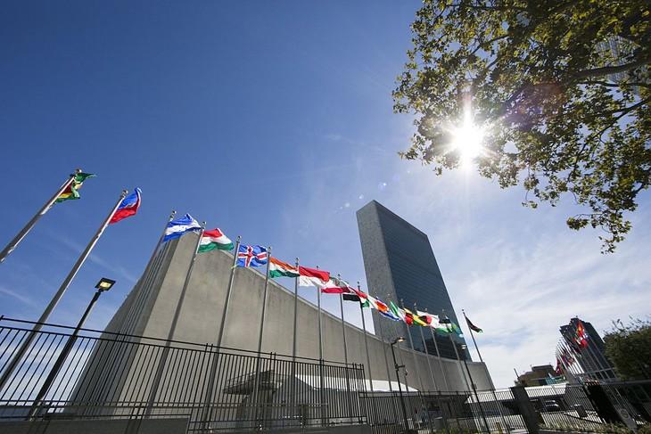 Vietnam und die Vereinten Nationen: Meilenstein in der 40-jährigen Zusammenarbeit - ảnh 1