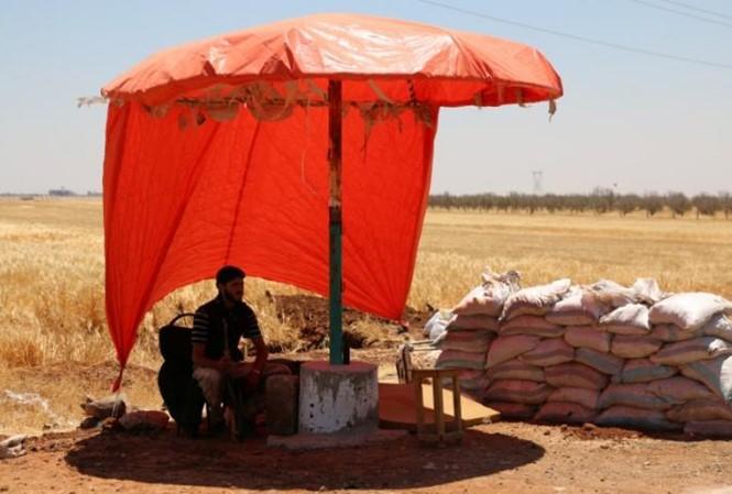 Syrie-L'ONU espère des discussions de paix en octobre-novembre - ảnh 1
