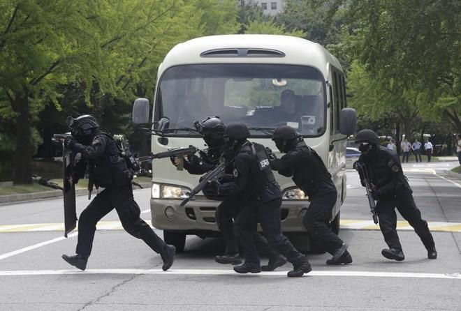 Le Pentagone annonce un manoeuvre militaire conjointe avec Séoul - ảnh 1