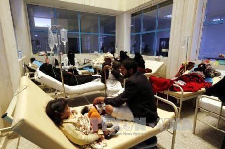 L'ONU dénonce une « triple tragédie » au Yémen - ảnh 1
