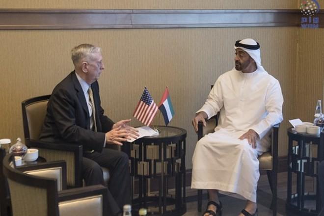 EAU – USA : Collaboration sur le renforcement de la sécurité régionale - ảnh 1