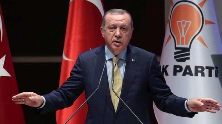 Syrie: Poutine et Erdogan veulent renforcer leur coopération - ảnh 1