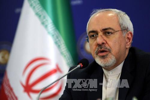 Nucléaire: l'iranien Zarif appelle l'Europe à « prendre le leadership » - ảnh 1