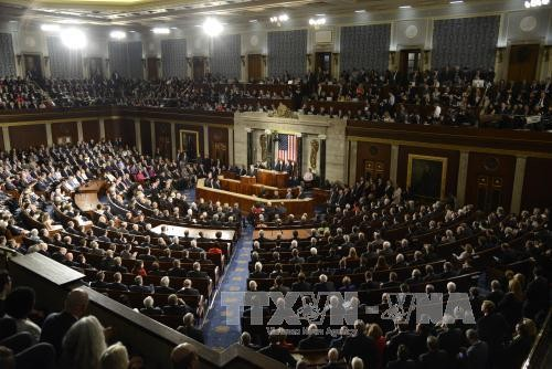 Les députés américains approuvent un projet de loi sanctionnant le Hezbollah - ảnh 1