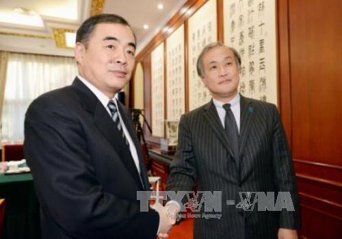 Le Japon et la Chine oeuvrent à la stabilité régionale - ảnh 1