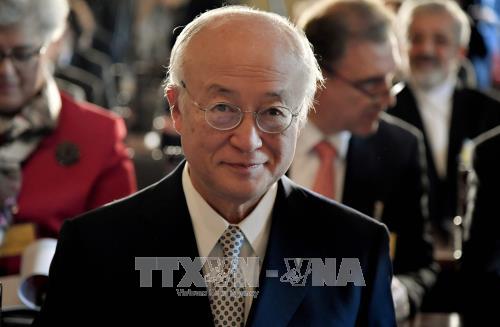 Le directeur de l'AIEA : L'Iran respecte l'accord nucléaire - ảnh 1