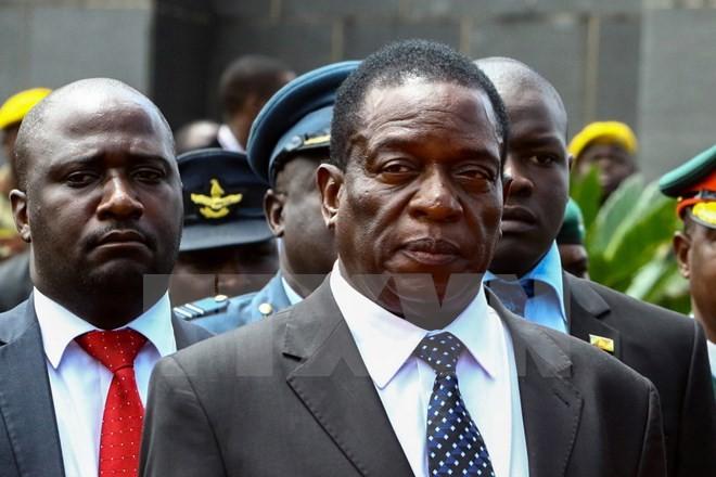 Zimbabwe : Emmerson Mnangagwa remplacera Robert Mugabe à la tête du pays - ảnh 1