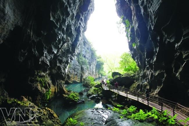 จังหวัด กว๋างบิ่ง(Quảng Bình) - จุดนัดพบของนักท่องเที่ยวในภาคกลางเวียดนาม - ảnh 6