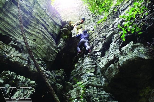 จังหวัด กว๋างบิ่ง(Quảng Bình) - จุดนัดพบของนักท่องเที่ยวในภาคกลางเวียดนาม - ảnh 7
