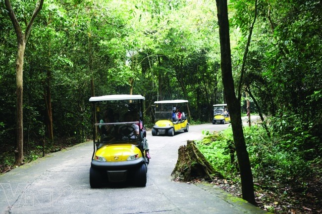 จังหวัด กว๋างบิ่ง(Quảng Bình) - จุดนัดพบของนักท่องเที่ยวในภาคกลางเวียดนาม - ảnh 9