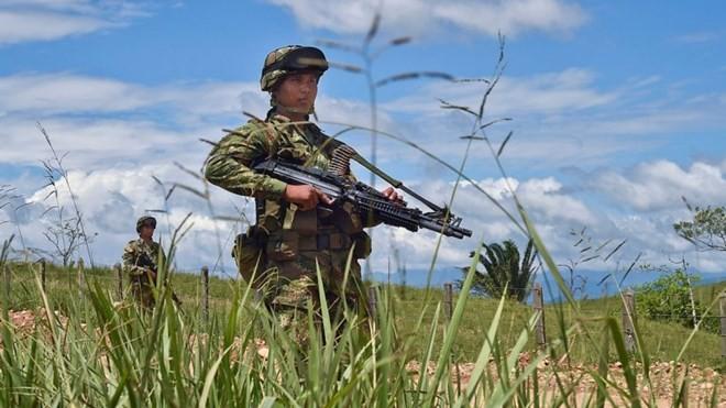 รัฐบาลโคลัมเบียและ FARC รื้อฟื้นการเจรจาสันติภาพ - ảnh 1