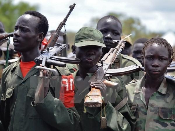 กลุ่มกบฎซูดานใต้ลักพาตัวเจ้าหน้าที่รักษาสันติภาพของสหประชาชาติ 12 นาย - ảnh 1