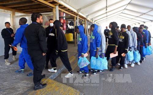 ผู้อพยพเกือบ 1200คนได้รับการช่วยชีวิตในทะเลเมดิเตอร์เรเนียน - ảnh 1