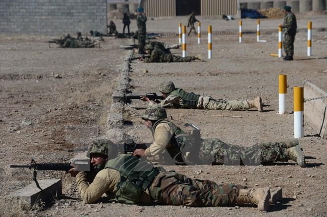เครื่องบินไร้คนขับของนาโต้สามารถสังหารสมาชิกกลุ่มไอเอส 18  คนในประเทศอัฟกานิสถาน - ảnh 1