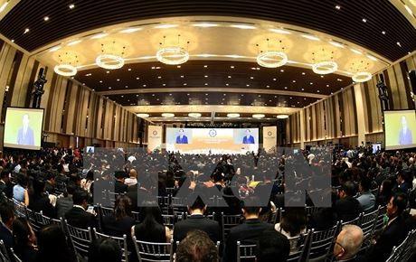 ประธานประเทศเจิ่นด่ายกวางเข้าร่วมและกล่าวปราศรัยเปิดการประชุมสุดยอดสถานประกอบการเอเปก 2017 - ảnh 1