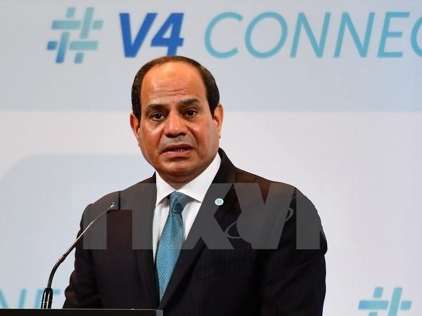 อียิปต์ยืนยันอีกครั้งถึงการสนับสนุนการจัดตั้งรัฐปาเลสไตน์ - ảnh 1