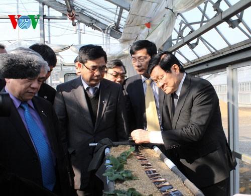 State President Truong Tan Sang visits Japan - ảnh 2