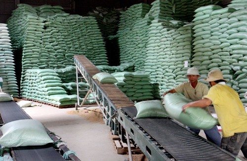 Vietnam contributes 14,000 tons of rice to ASEAN+3 rice reserve annually - ảnh 1