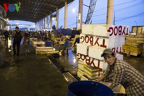 Tho Quang fishing port in spring  - ảnh 14