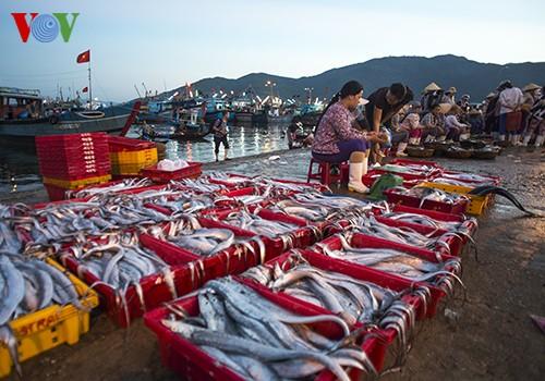 Tho Quang fishing port in spring  - ảnh 17