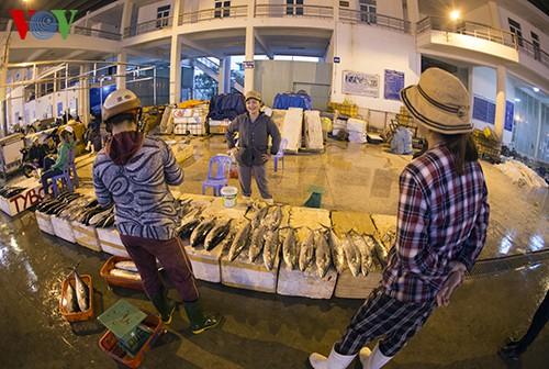 Tho Quang fishing port in spring  - ảnh 7